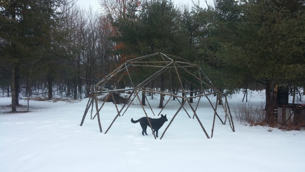 QnA Design Geodesic Dome outdoor activity family campout 07 snow